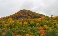 Ði Tìm Dáng Thu Vermont