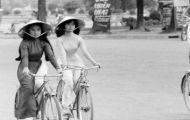 Sài Gòn , Cái Trâm Cỏ Thi