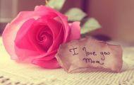 Mỗi Ngày Mừng Tuổi Mẹ